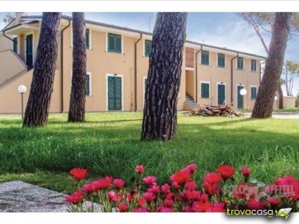 Foto Appartamento in Affitto a Piombino