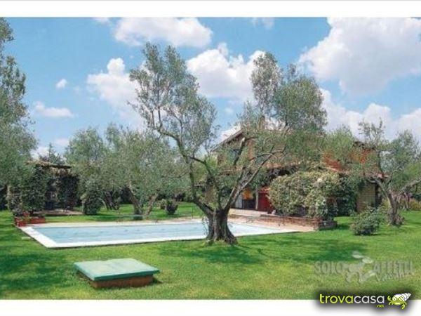 Foto Villa/Villetta in Affitto a Vetralla