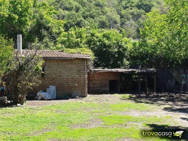 Rustici casali e case di corte in vendita a trevignano for Case in vendita trevignano romano