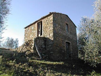 Cinigiano
