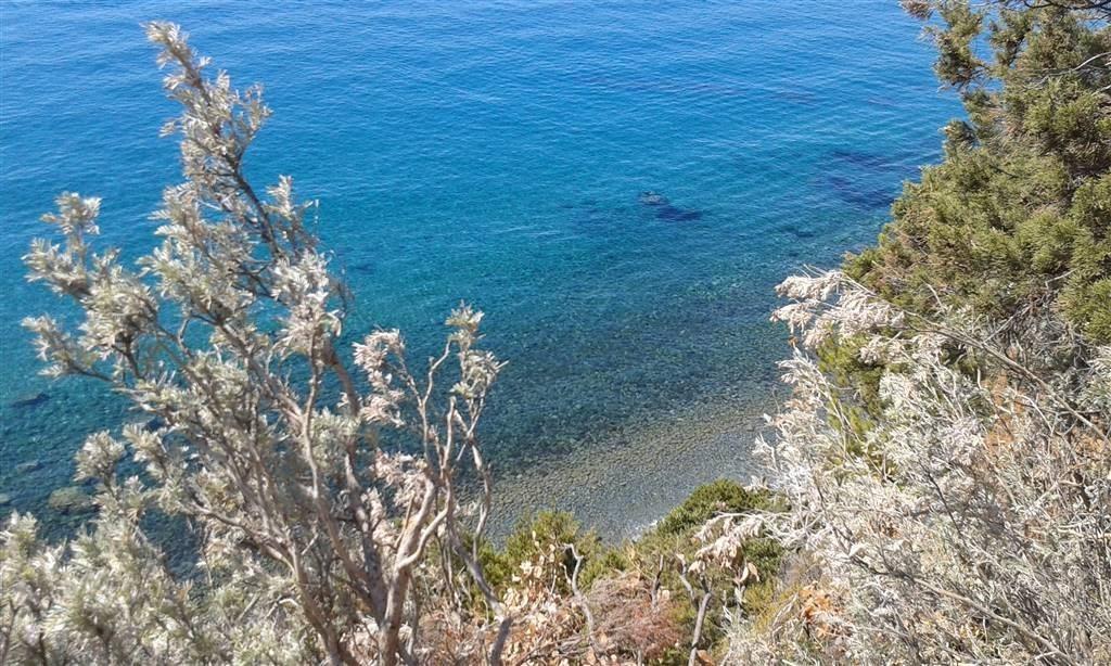 Vendita Villa o villino Castiglione della Pescaia